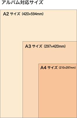 alpolic_size
